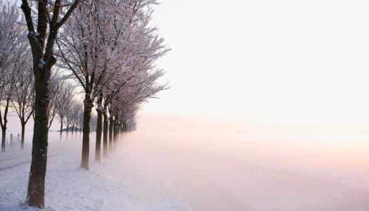 Chutes de neige : votre habitation est-elle bien assurée ?