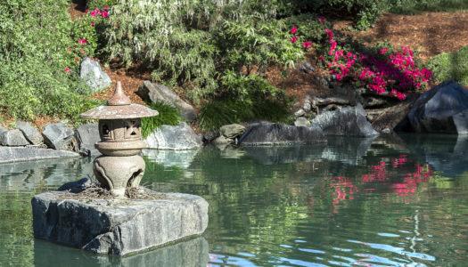 Astuce : créez votre propre jardin zen