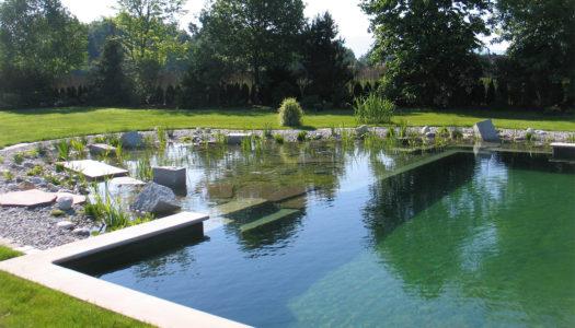 Les piscines naturelles