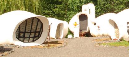 les maisons bulles de raon l 39 etape vendre. Black Bedroom Furniture Sets. Home Design Ideas