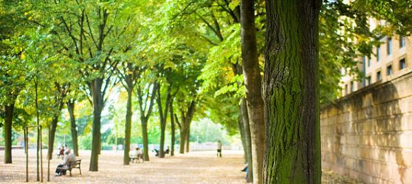 Metz esplanade