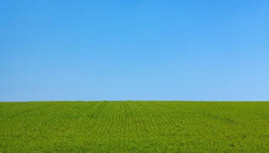 Quelles différences entre terrain isolé et terrain de lotissement?