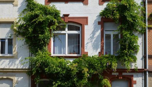 Tout va bien sur le marché de l'immobilier