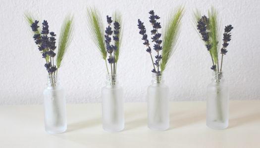Éliminer les mauvaises odeurs à la maison