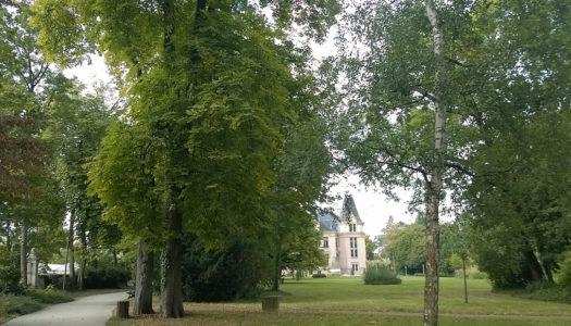 Les prix des loyers à Vandoeuvre-lès-Nancy